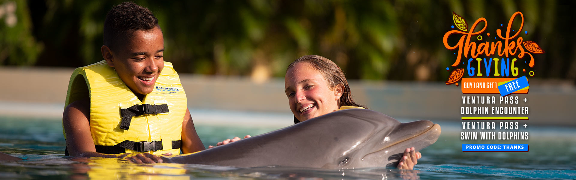 Thanksgiving Deal Swimming with Dolphin at Ventura park Cancun