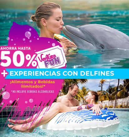 ventura fun + nado con delfines